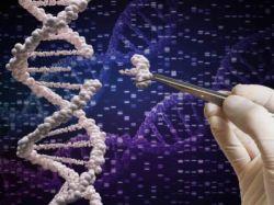 港股异动 | 嘉和生物-B(06998)午后涨超10% 国家药监局批准两项GB491三期临床试验申请