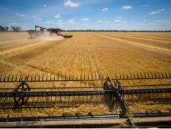 農米良品(FAMI.US)盤前跌近40%,公司宣布擬增發普通股和預融資認股權證