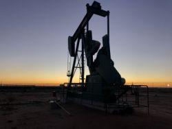 中石油(00857)漲超4%領漲石油股 花旗預計四季度油價還有上漲空間 美油創六周新高