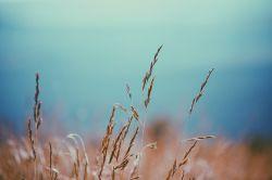 贛鋒鋰業(01772)預期前三季度歸母凈利潤同比增長530.14%-678.41%